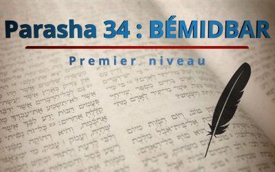 Parasha 34 : BÉMIDBAR  – Premier niveau
